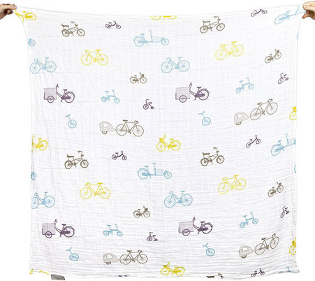 bicycleswaddle__08093.1407795213.451.416