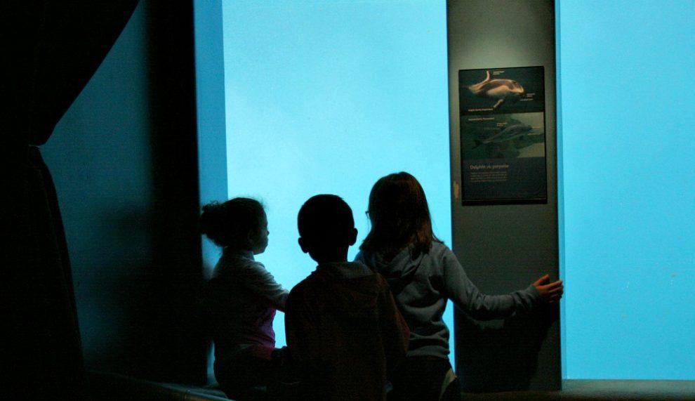 Research Outpost At Vancouver Aquarium
