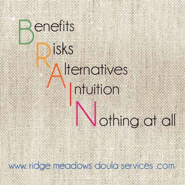 Ridge Meadows Doula Services Logo