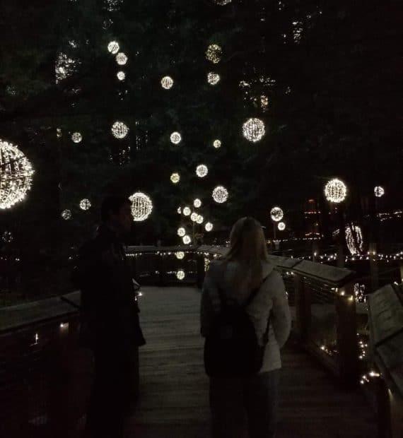 Outdoor light display