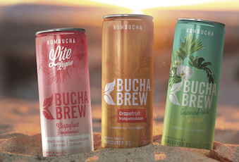 Cans of Bucha Brew