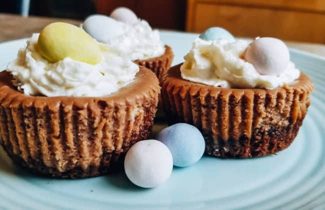 Mini Egg Cheesecake