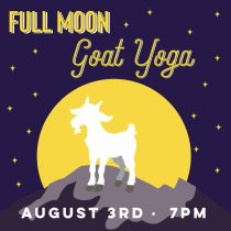 Maan Farms Full Moon Yoga