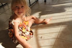 EllaDragonfly