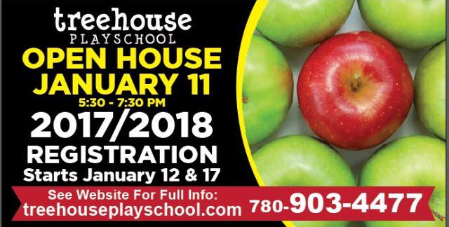 treehouse playschool